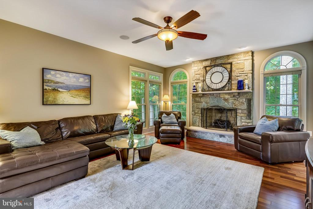 Gas fireplace - 208 ROSALIE COVE CT, SILVER SPRING