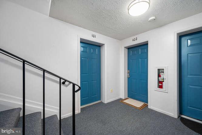 Level 1 Front Doors - 17050 CAPRI LN #101E, DUMFRIES