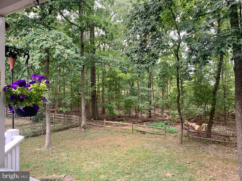Treed view from back deck - 108 ALMEY CT, STERLING