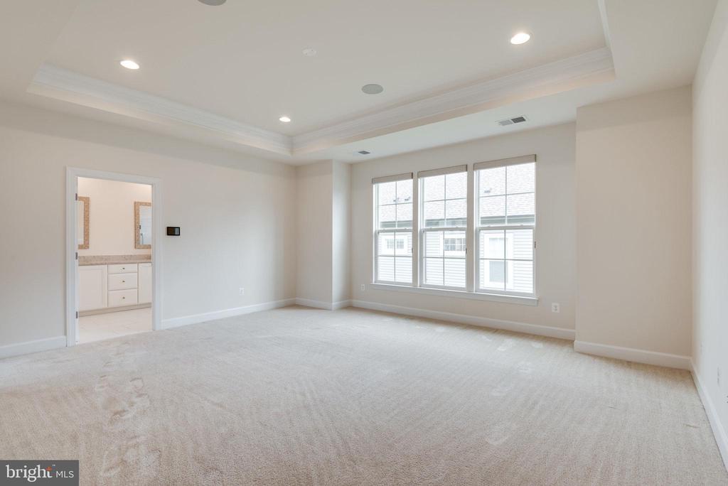 Main level, huge primary bedroom - 42758 AUTUMN DAY TERRACE, ASHBURN