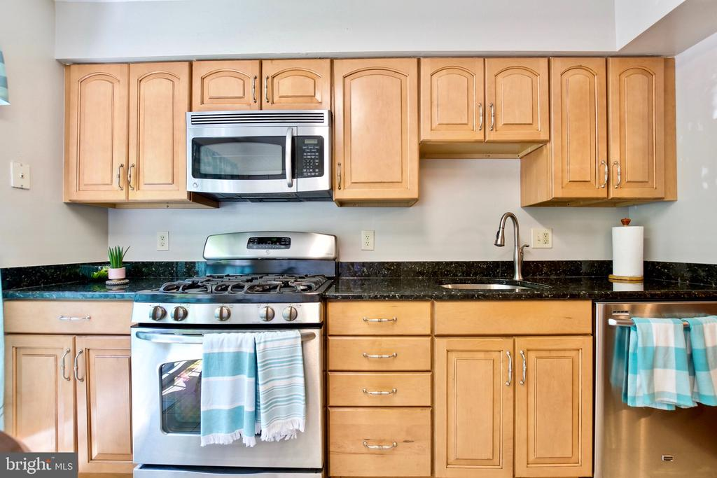 Beautiful Kitchen Cabinetry and Gourmet Appliances - 9453 CLOVERDALE CT, BURKE
