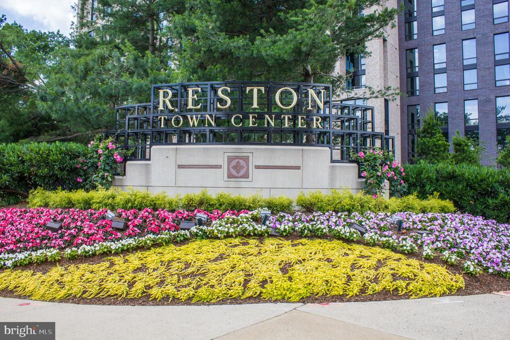 Reston Town Center Sign - 11990 MARKET ST #215, RESTON