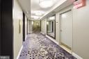 Newly renovated interior hallways - 9039 SLIGO CREEK PKWY #410, SILVER SPRING