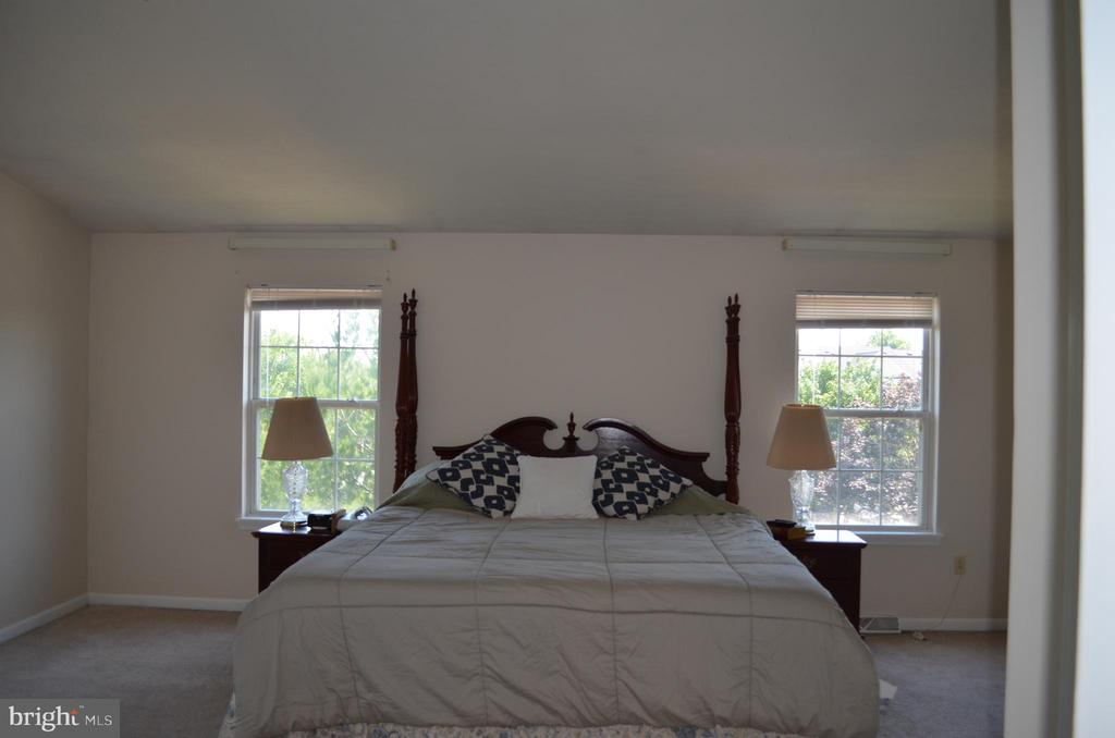 Beautiful master bedroom with plenty of light - 4900 EDGEWARE TER, FREDERICK