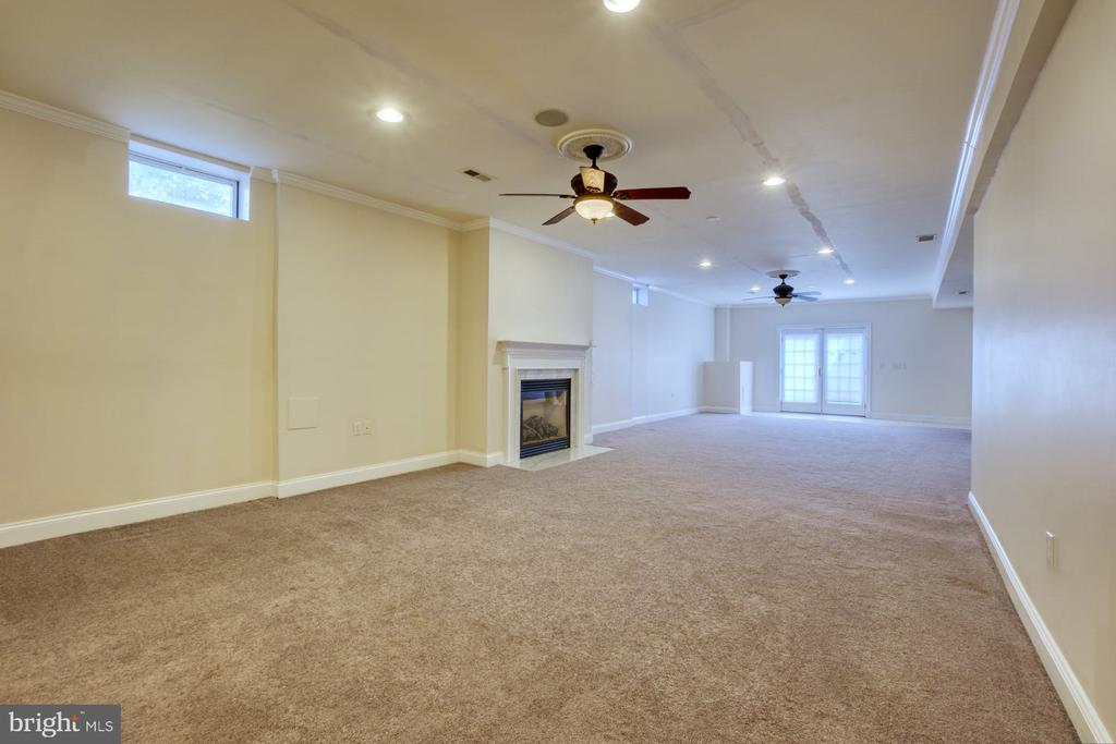 LARGE RECROOM IN THE BASEMENT WITH WALK OUT - 20003 BELMONT STATION DR, ASHBURN