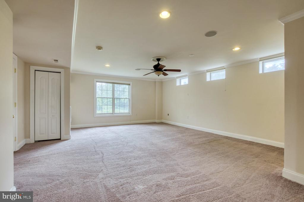 ANOTHER BEDROOM IN THE BASEMENT! - 20003 BELMONT STATION DR, ASHBURN