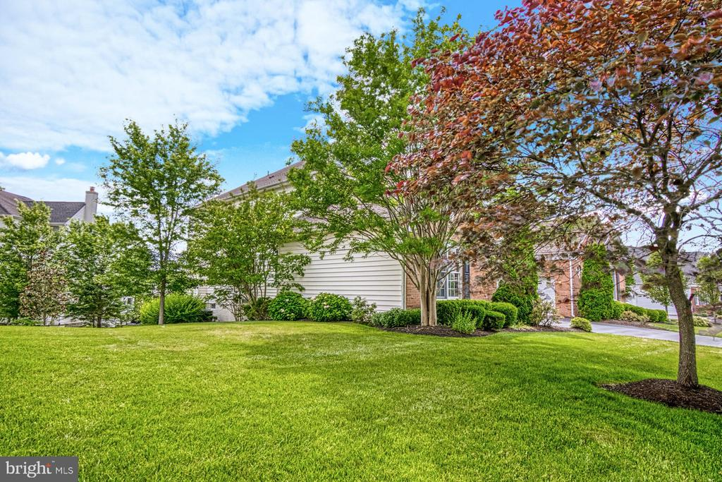 ENJOY THE BEAUTY OF THE YARD YEAR ROUND - 20003 BELMONT STATION DR, ASHBURN