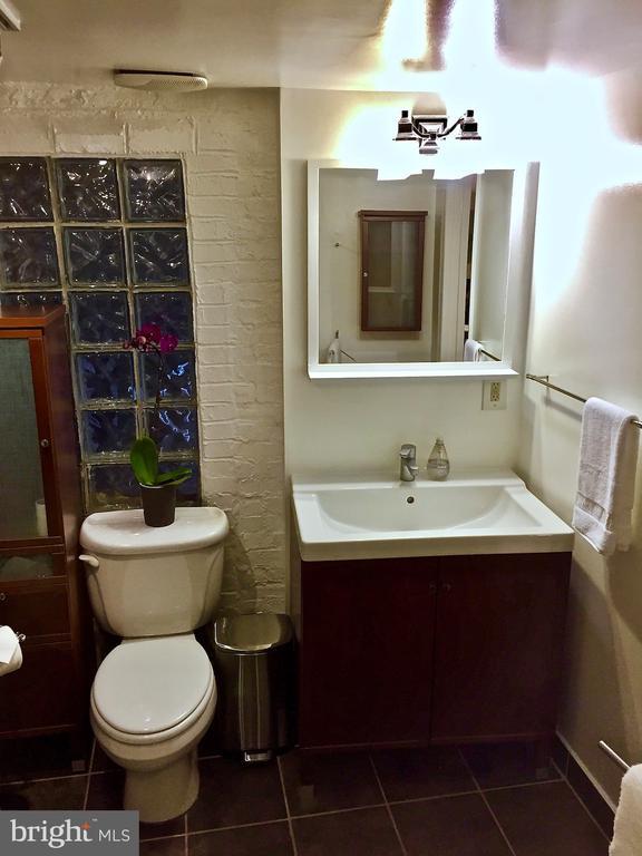 Basement Bathroom - 923 NORTH CAROLINA AVE SE, WASHINGTON