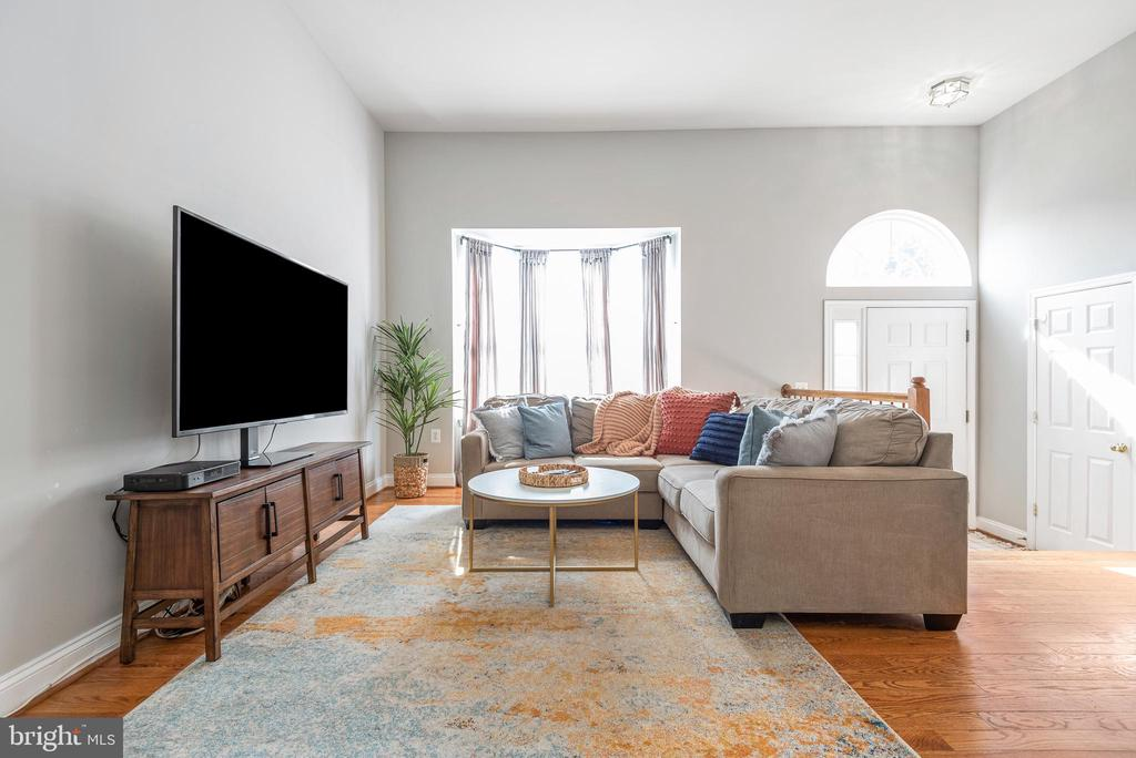 Cozy up for a movie  in your large lvg room - 612 BURBERRY TER SE, LEESBURG