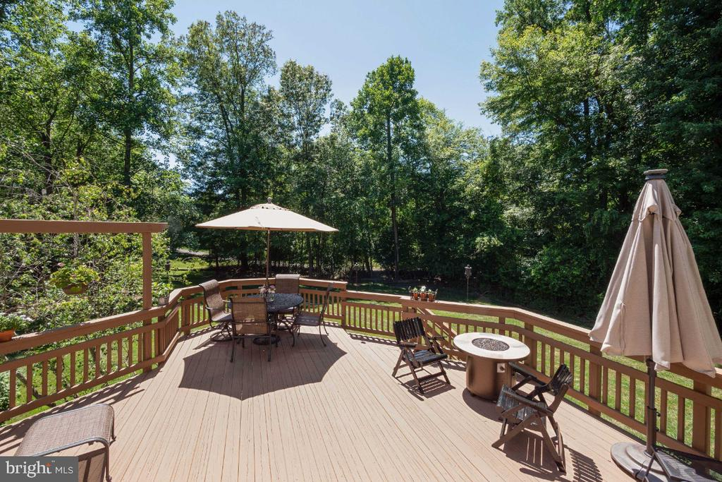 For the nature lovers - 3200 OX MEADOW CT, HERNDON