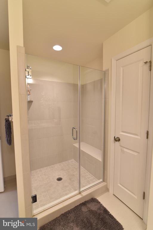 Primary bath shower - 42349 ALDER FOREST TER, STERLING