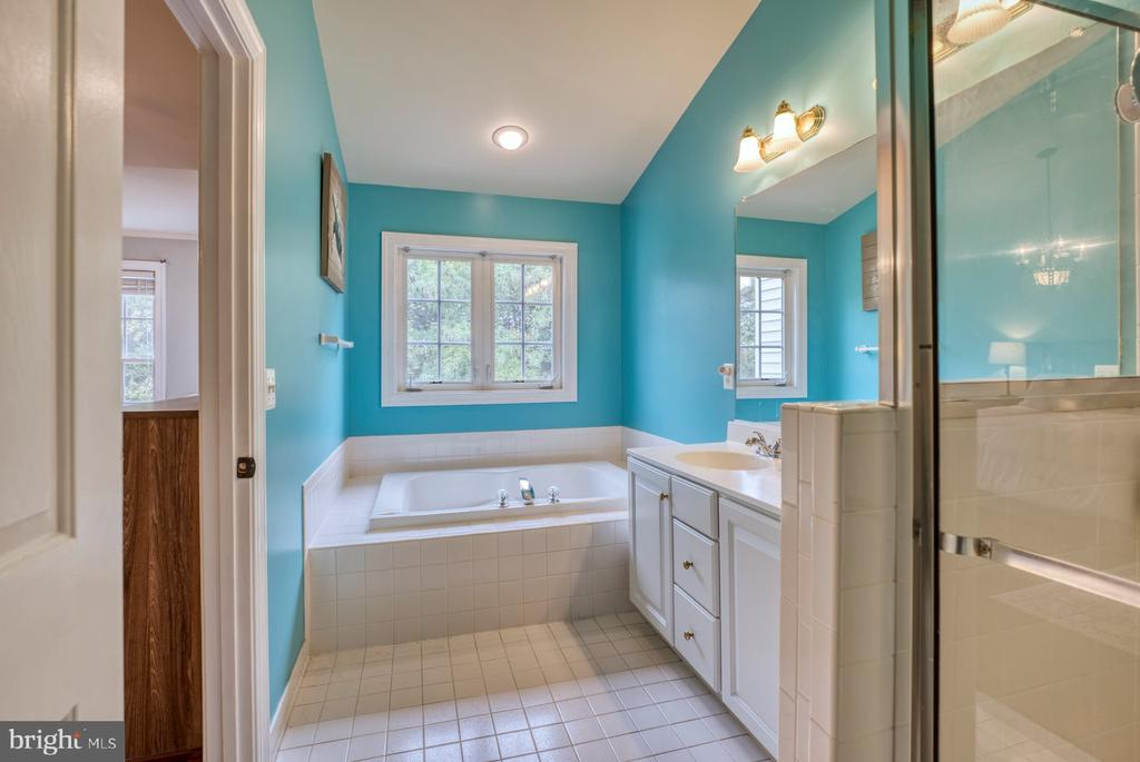 Soaking Tub AND Stall Shower - 8075 MONTOUR HEIGHTS DR, GAINESVILLE