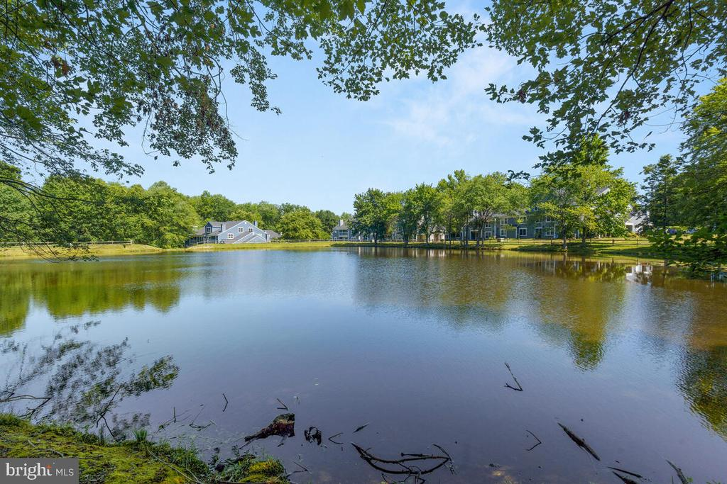 Lakes in Community - 5835 ORCHARD HILL LN, CLIFTON