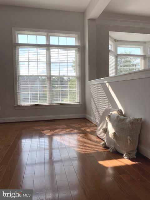 perfect spot for comfy couch - 43512 STARGELL TER, LEESBURG