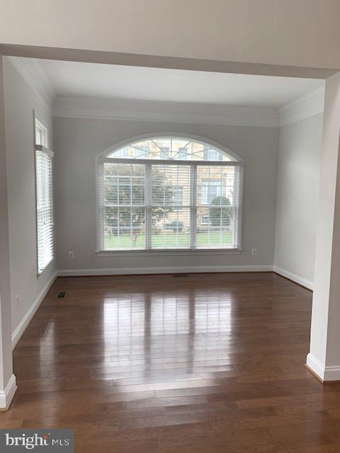 Charming Living Room with arched window - 43512 STARGELL TER, LEESBURG