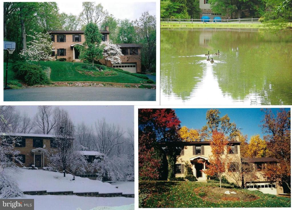 The beauty of the seasons..... - 3208 SHOREVIEW RD, TRIANGLE