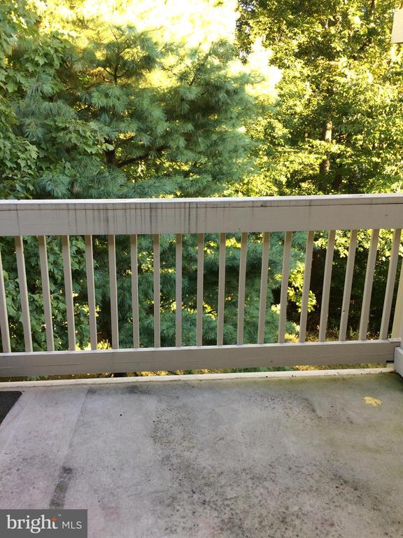 Overlooks Trees - 5761 REXFORD CT #S, SPRINGFIELD