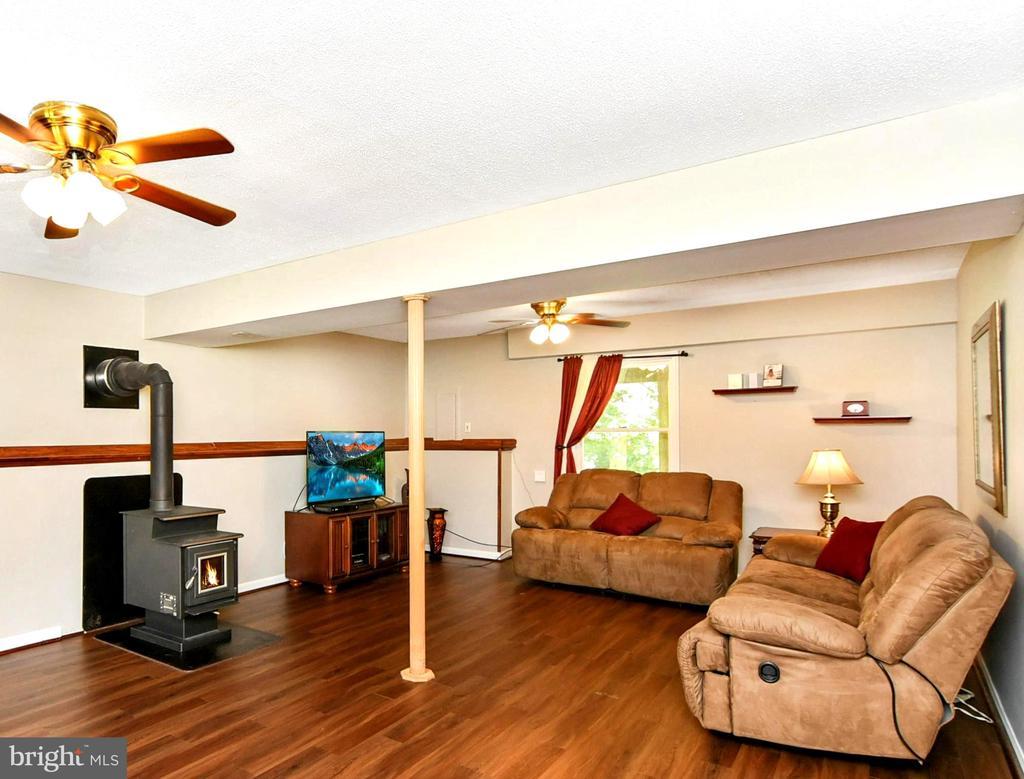 basement rec room/ family room - 4 US FORD LN, FREDERICKSBURG