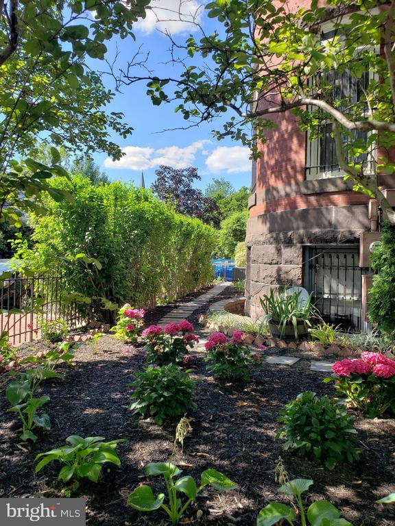 Beautiful Plants and Step Stones. - 1115 RHODE ISLAND AVE NW, WASHINGTON