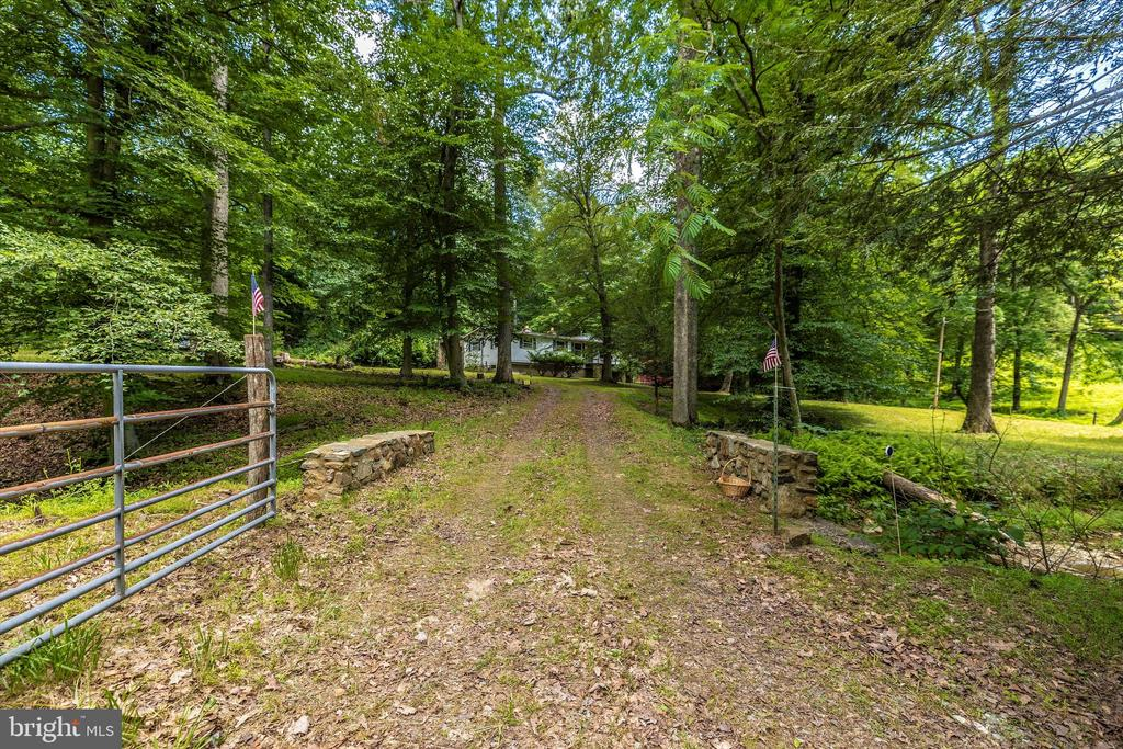 Driveway - 6233 YEAGERTOWN RD, NEW MARKET