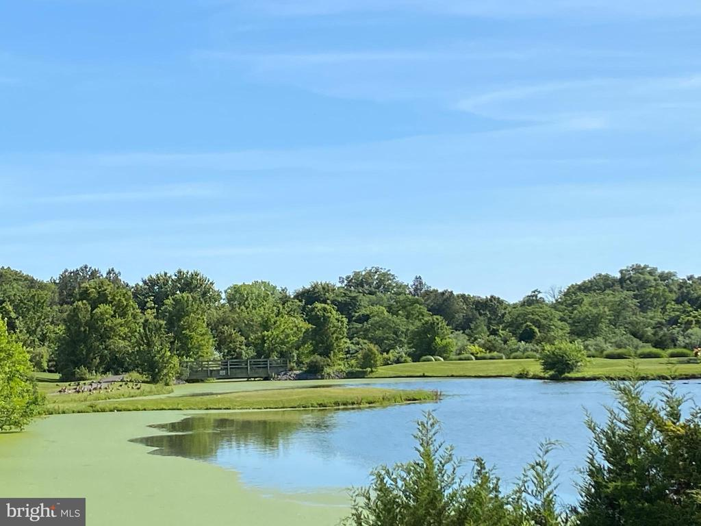 Community Lakes & Ponds - 384 TURNBERRY DR, CHARLES TOWN