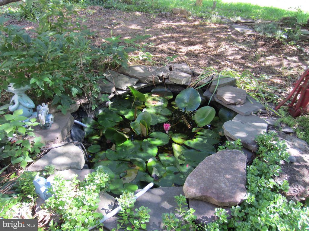 Pond off the front porch - 81 ESTATE ROW, STAFFORD