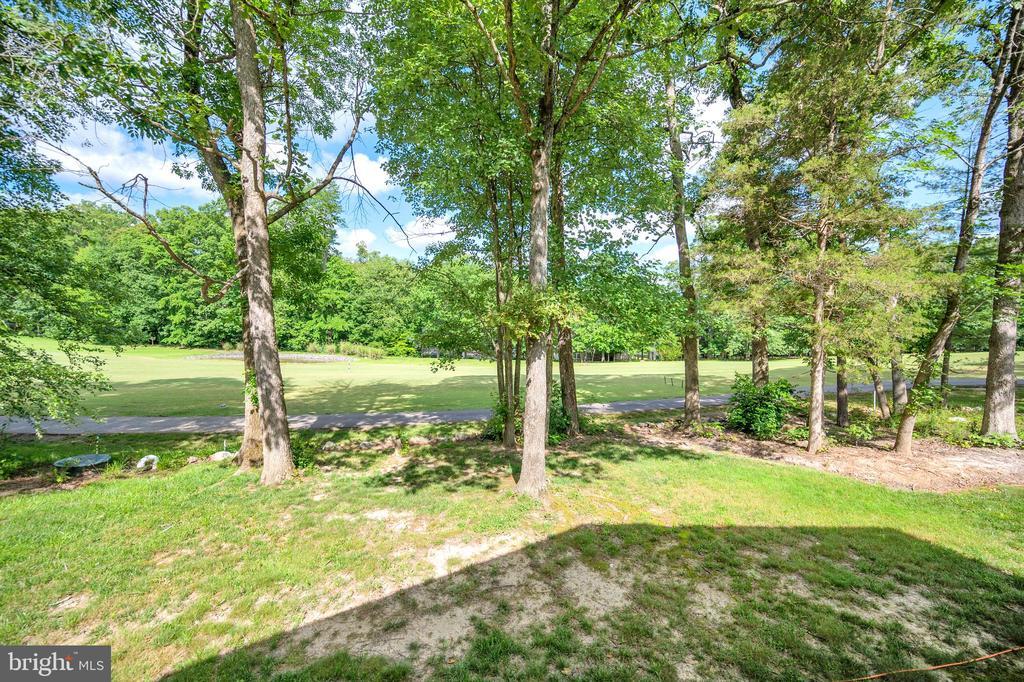 golf & pond overlook - 141 EAGLE CT, LOCUST GROVE