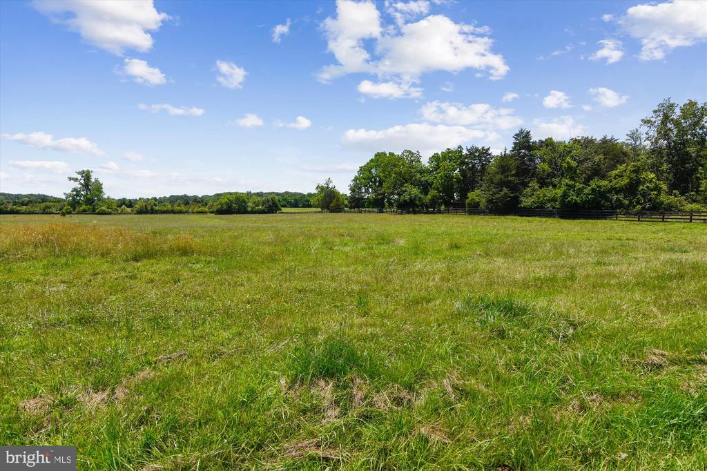Horse fields - 1823 OLD WINCHESTER RD, BOYCE