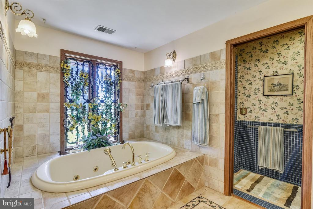 Main bath - 1823 OLD WINCHESTER RD, BOYCE