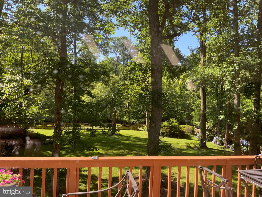View from Deck - 6551 DEARBORN DR, FALLS CHURCH