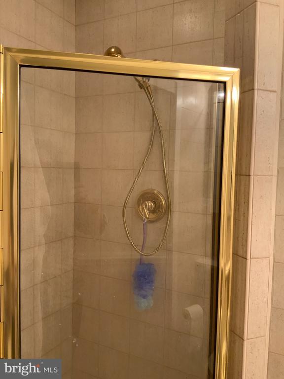 Guest Bath Shower - 6551 DEARBORN DR, FALLS CHURCH