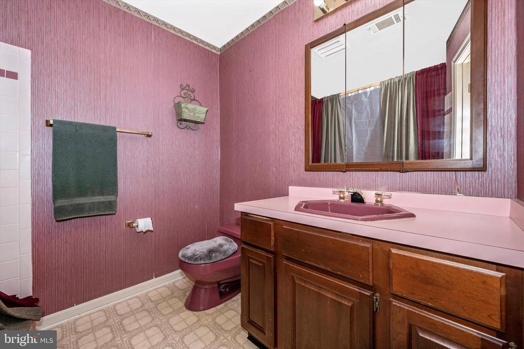 Master Bath - 10740B WOODSBORO RD, WOODSBORO