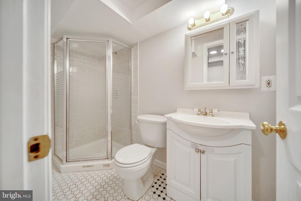 Full Bathroom in Basement - 2919 MONROE PL, FALLS CHURCH