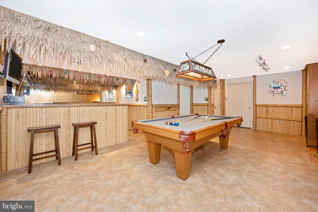 Entry from the outside into your Tiki Bar - 6904 BARON CT, FREDERICK