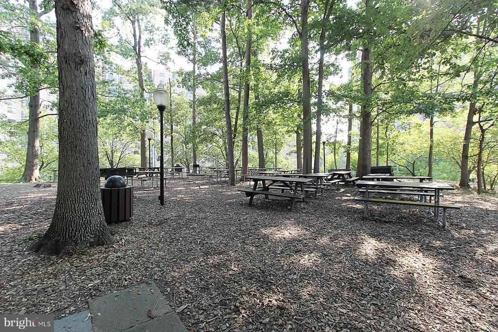 Picnic and Grilling Areas in Park Setting! - 5904 MOUNT EAGLE DR #504, ALEXANDRIA