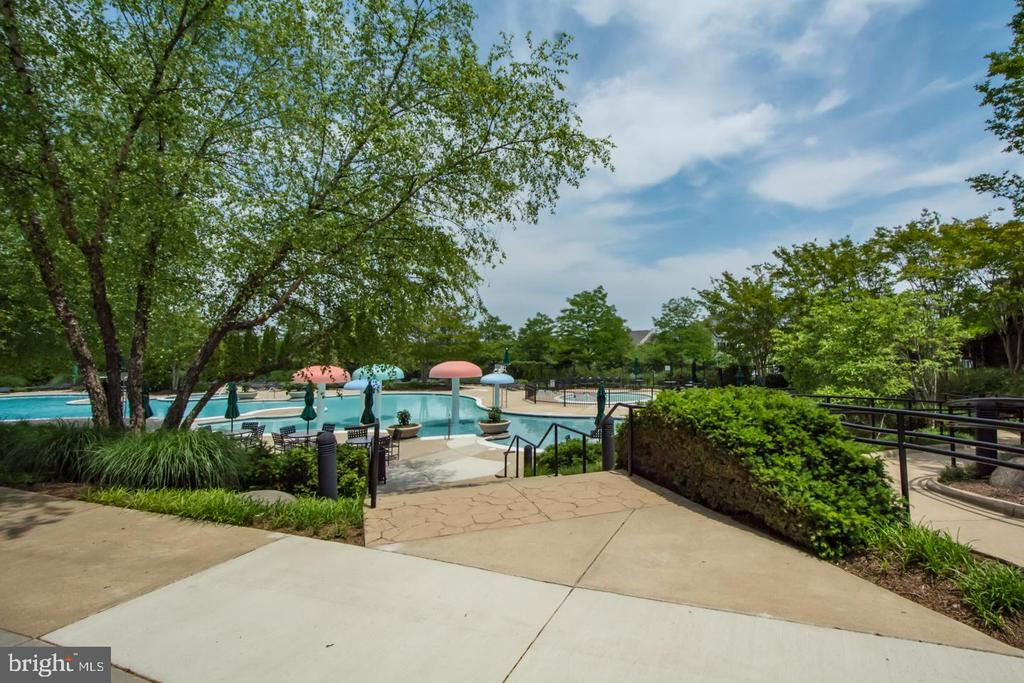 Spectacular resort-style zero entry pool - 43409 RIVERPOINT DR, LEESBURG