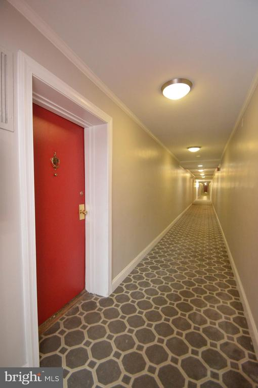 All hallways also renovated in 2014 - 6137 LEESBURG PIKE #602, FALLS CHURCH