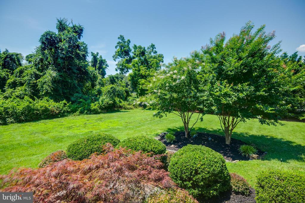 mature landscaping surrounds the home - 8305 VENTNOR RD, PASADENA