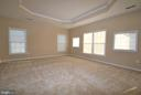 Primary bedroom with tray ceiling - 22554 FOREST RUN DR, ASHBURN
