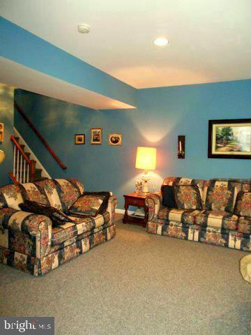 Family room on ground level- could make a suite - 20064 NORTHVILLE HILLS TER, ASHBURN