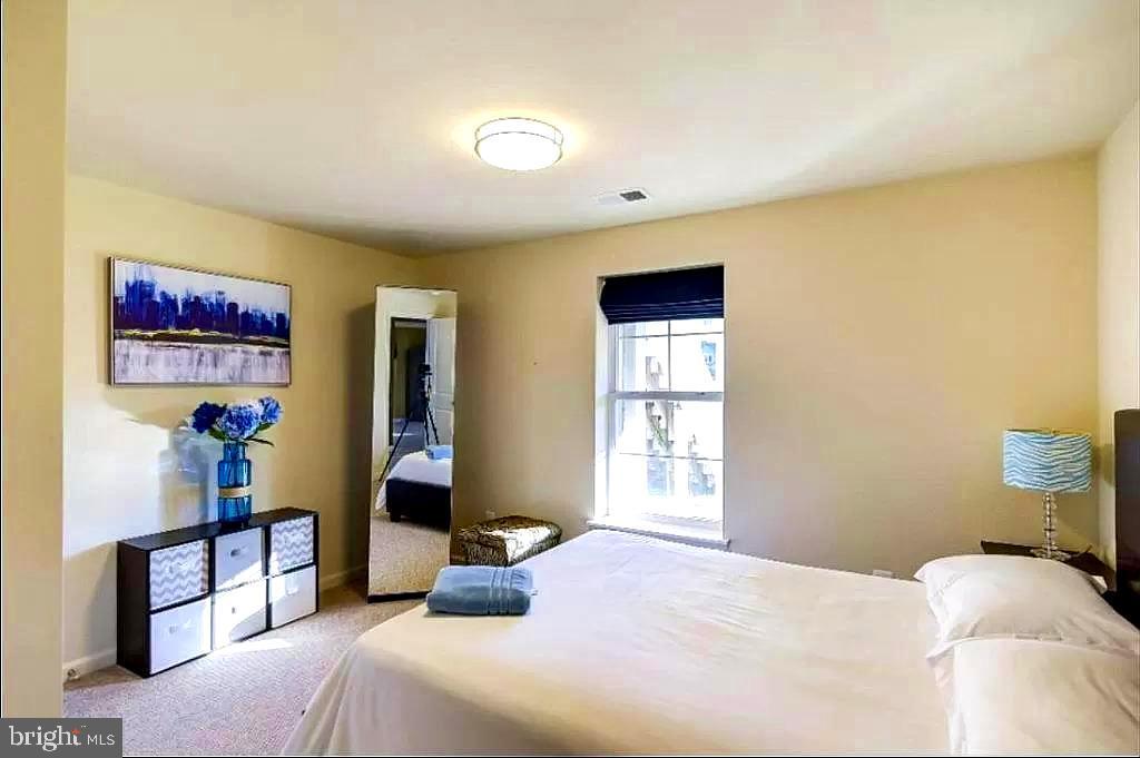 Lower lever bedroom - 23384 MORNING WALK DR, BRAMBLETON