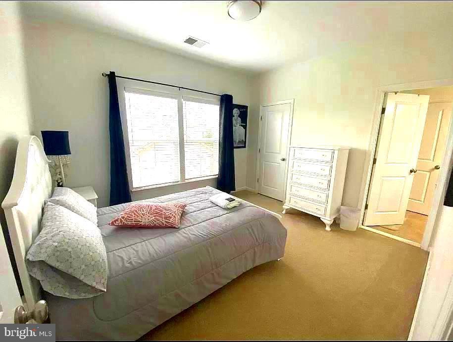 Lower lever bedroom with full bathroom - 23384 MORNING WALK DR, BRAMBLETON