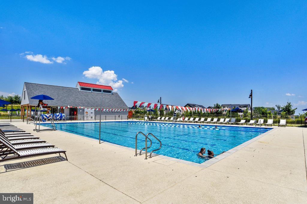 Pool - 17152 BELLE ISLE DR, DUMFRIES
