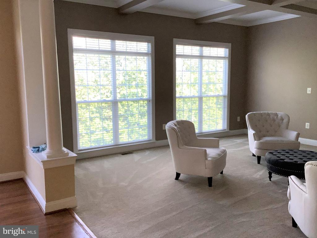Private views of mature trees - 22554 FOREST RUN DR, ASHBURN