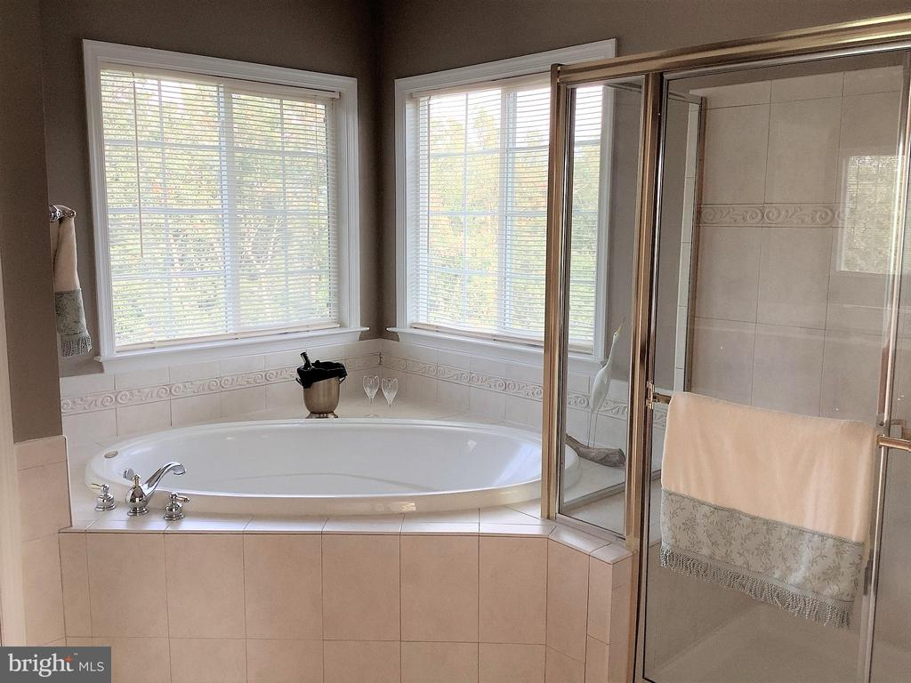 Separate Soaking Tub and Shower with Privacy - 22554 FOREST RUN DR, ASHBURN