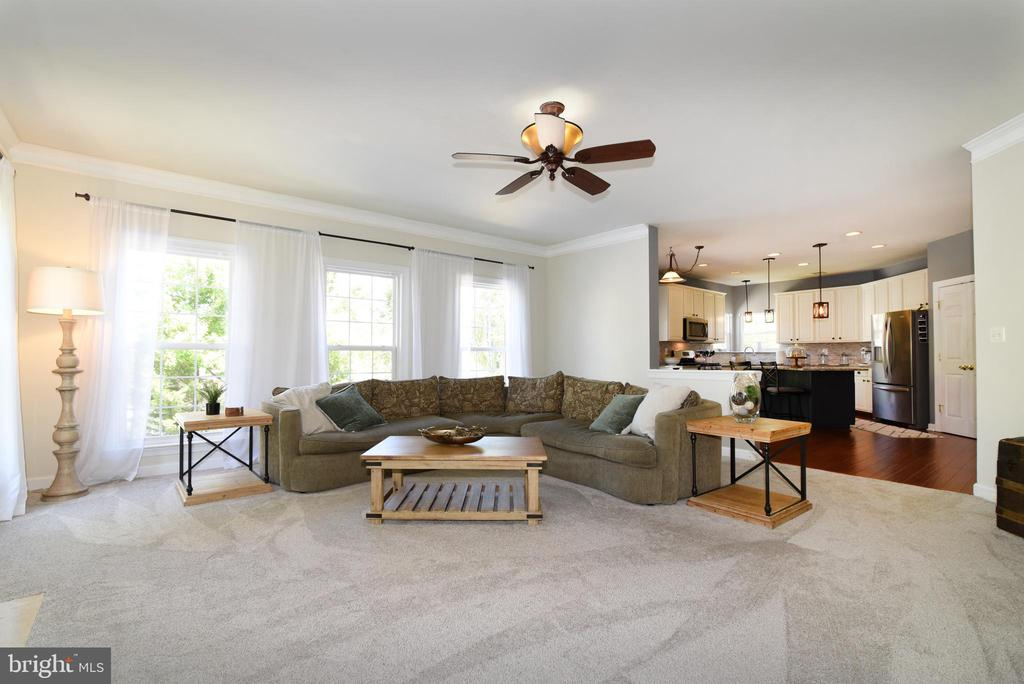 Tons of natural light in the family room - 43298 HEATHER LEIGH CT, ASHBURN