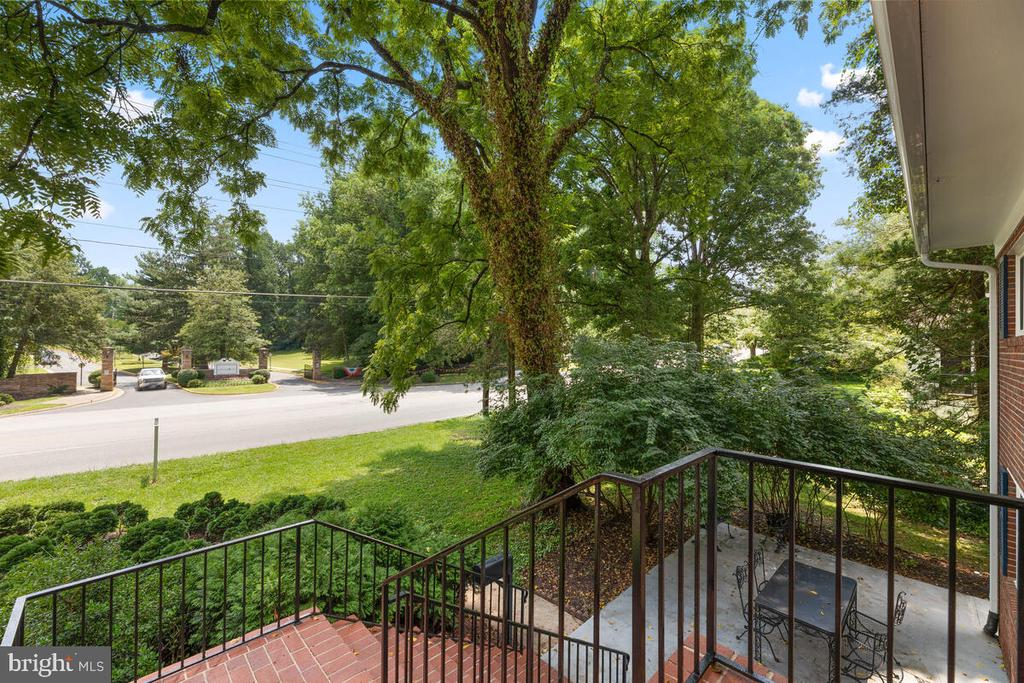 Street View from Front Patio - 3226 SLEEPY HOLLOW RD, FALLS CHURCH