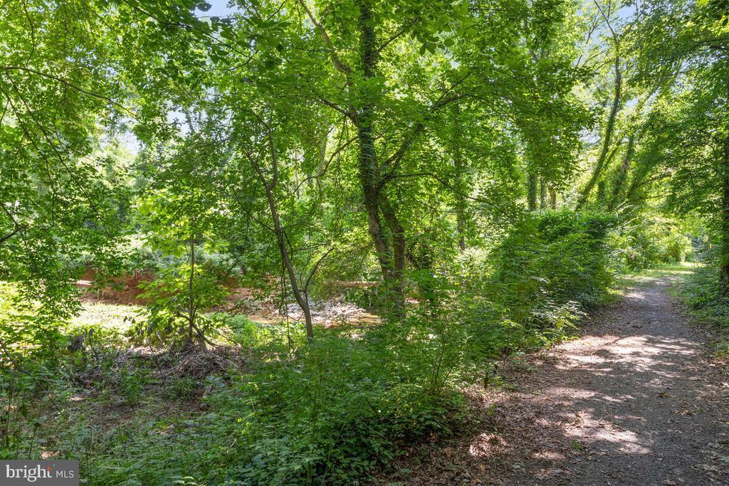 Jogging Path/Creek Access - 3226 SLEEPY HOLLOW RD, FALLS CHURCH