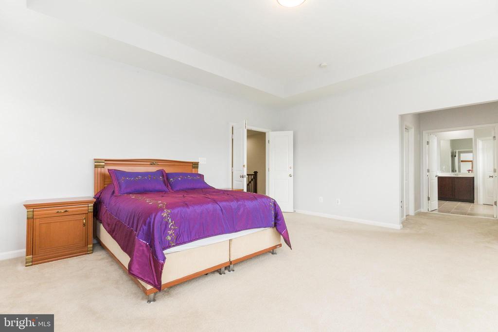 Owners suite - 23384 MORNING WALK DR, BRAMBLETON