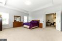 Owners suite with a tray ceiling - 23384 MORNING WALK DR, BRAMBLETON